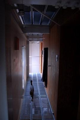 軽量鉄骨のロフトハウス2階の廊下1